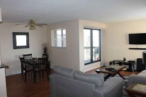 Downtown - 2 Bedroom Condominium! $100 off first 3 months!