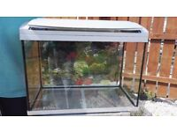Whole set fish tank for sale( 1year old)