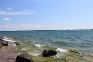 BREATH TAKING WATERFRONT WOLFE ISLAND LOT