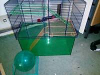 Gerbil Cage And Ball