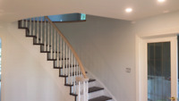 Professional Painter Available :