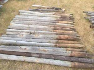 "Treated 3"" 6ft Fence Poles"