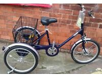 PASHLEY 3 SPEED TRICYCLE FOR SALE BOSTON LINCS AREA