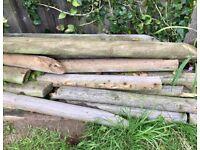 Free! Firewood