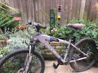 Bike for sale- perfect for teenagers