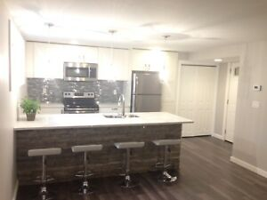 Beautiful 2 bedroom suite - Available September 1
