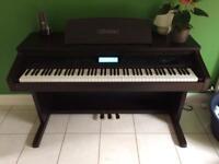 Casio Celviano AP-60R piano