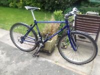 GENTS SARACEN MOUNTAIN BIKE 21 GEARS RIDES VERY WELL CLEAN CONDITION