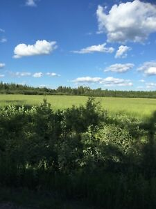 80 Acres with Spring Fed Pond and River Frontage