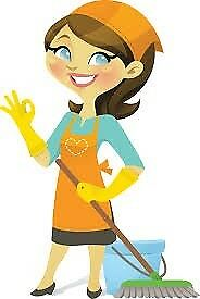 Housekeeper/Domestic Cleaner at your service! Regular house cleans in Brighton and Hove