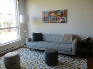 Roommate wanted (short term)