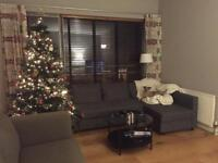 7 foot Christmas tree with lights and all decorations!
