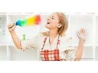 MS Cleaning Services