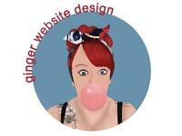 Basic Website Design £100