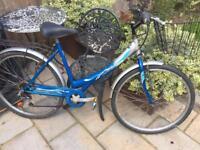 """Ladies 19"""" Solstice bike bicycle inc basket & delivery"""