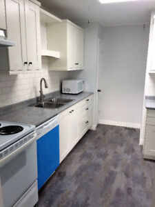 3 BDRM apt. in Collingwood  NEWLY RENOVATED $1700 inclusive