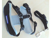 Dog car seatbelt/body harness