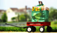 Grocery Service (Are you too busy?)