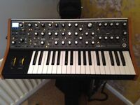 Moog Sub 37, paraphonic analogue synth.