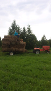 Gravely Tractor Package - open to offers