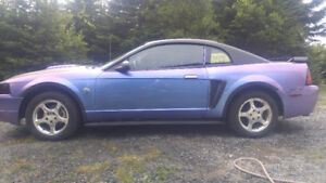 2004 Ford Mustang 40 anniversy edition Coupe (2 door)