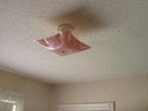 Fragile pink ceiling light