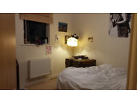 cosy double in 2 bed flat in st georges