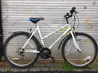 Astra Starlifter 2 ladies mountain bike