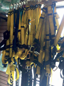 Used Safety Harness for $29.99 (Alberta Drywall, 6030 50 Street)