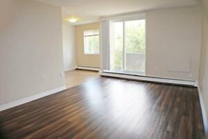 2 Bedroom Apartment for Rent in Sarnia with Gym AND Social Room! Sarnia Sarnia Area image 9