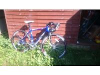 AMMACO XRS700 ALLOY ROAD BIKE BLUE excellent condition