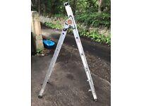 185cm long step ladder