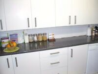 ***SWAP*** Lovely 1 bed lower ground floor house conversion flat, own garden, in kentish town, NW5
