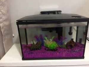 LED fish tank and accessories