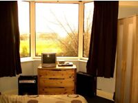 Spacious double room £380 per month, including council tax & Weekly cleaner.