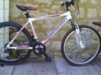 Cheap Gents bike 26 inch wheel