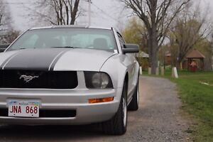 Ford Mustang Showroom Condition! MUST SEE!