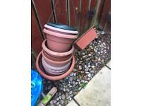 Plant pots