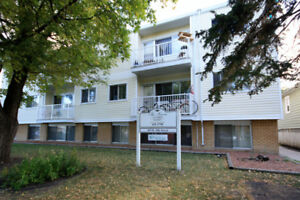 The Sierra - Bachelor Apartment for Rent