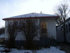 Newly Renovated 4 Bedroom House with Huge Yard Available Now!