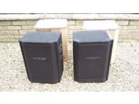 2 Peavey HiSys 2XT 4 Ohm Speakers - 1 speaker requires attention hence price