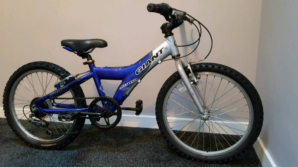 Kid Child Children S Bike Blue 5 Speed Giant Mountain Bike 20