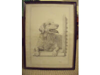 C Varley signed framed black & white pencil sketch of golden retriever sitting in doorway. £10 ovno.