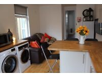 Brand new, fully furnished professional house share