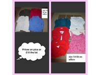 ladies clothes size 14 prices on pics or £10 the lot collection only from didcot