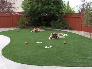 Artificial Grass & Putting Greens by Mirage