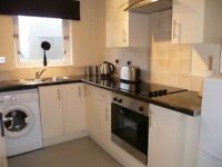 Studio Flat for Rent - Fully Furnished
