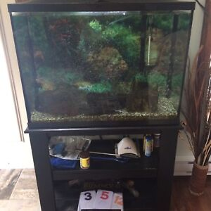 Fish tank, stand and fish