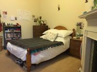 Room in lovely Bruntsfield Flat
