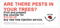 Get $10 off Any Tree Spraying Service!